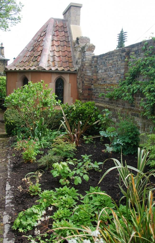 Garden 4th May 2014 019